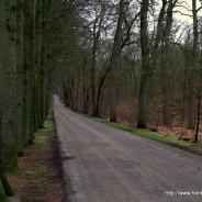 Tussen Den Haag en Leidschendam