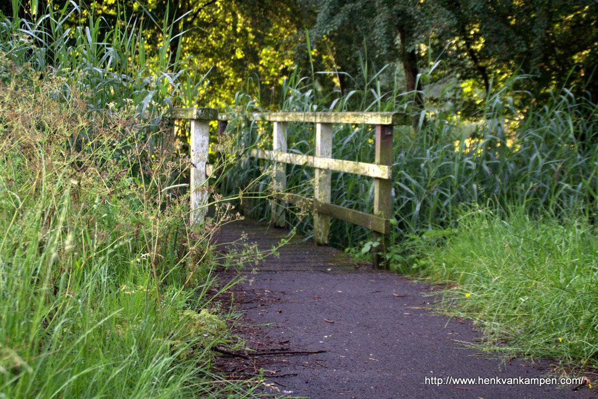 Bruggetje tussen de Randijk en het park