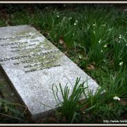 De begraafplaats aan het kerkveld