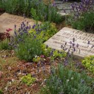 Dodenherdenking en Bevrijdingsdag: wat vertel je een kleuter?