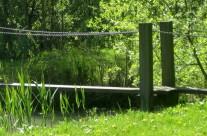 Lente in het natuurkwartier