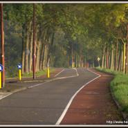 Jutphasestraatweg